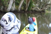 Kayaking with the kids part 2 : Hahei Creek