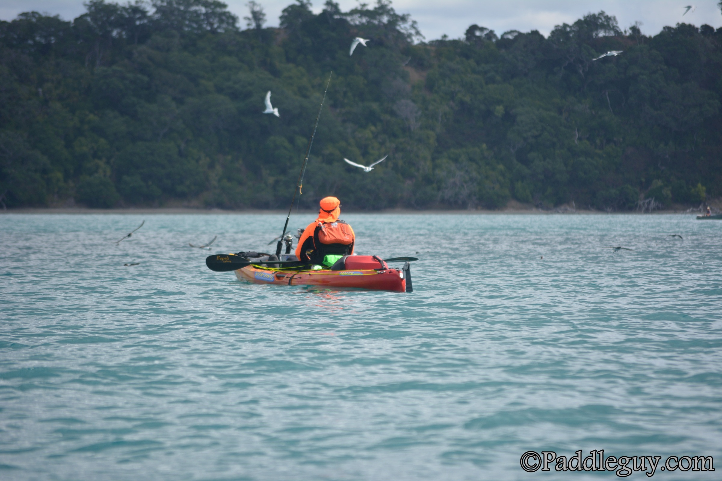 Kayak Fishing Mahurangi Viking Kayaks001001133