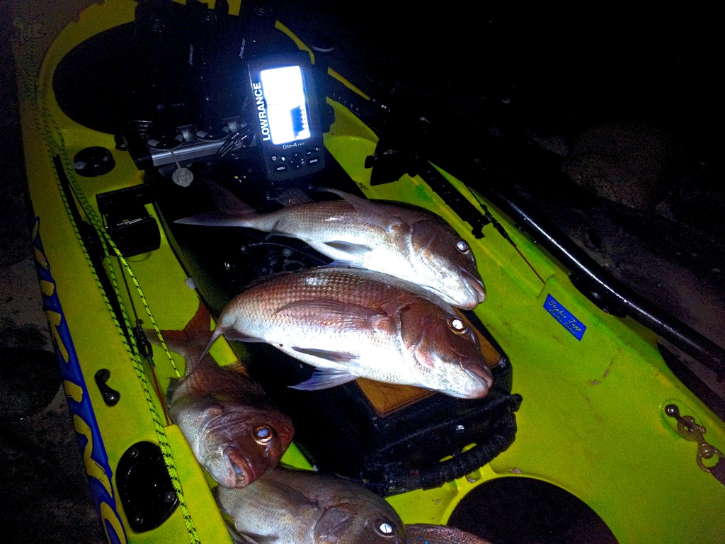 Lowrance Elite 4 session Army BAY12